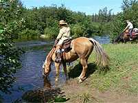 Horse back Trail Rides